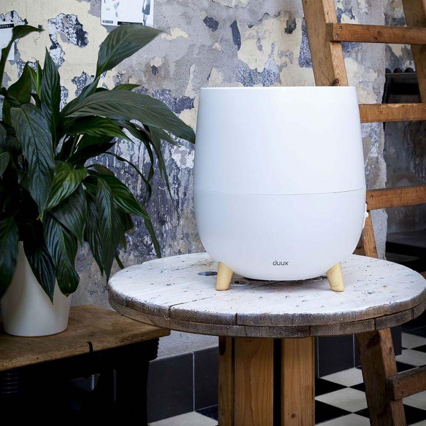Duux Ovi Air Humidifier, sfere